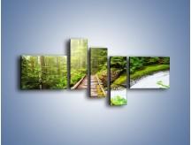 Obraz na płótnie – Bezpieczna droga przez las – pięcioczęściowy KN922W5