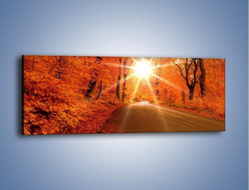 Obraz na płótnie – Droga pełna słońca – jednoczęściowy panoramiczny KN160
