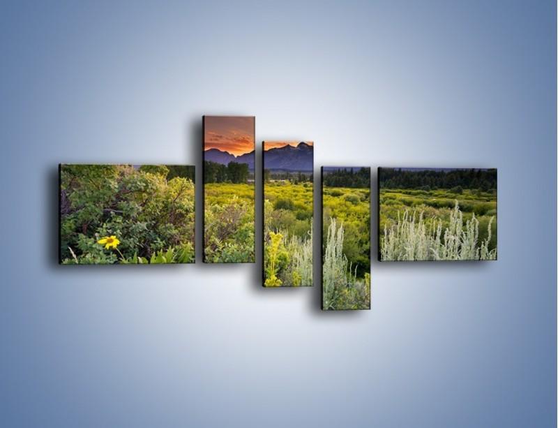 Obraz na płótnie – Wieczorny spokój na polanie – pięcioczęściowy KN987W5
