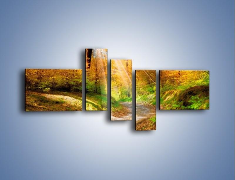 Obraz na płótnie – Promienną i słoneczną ścieżką przez las – pięcioczęściowy KN989W5