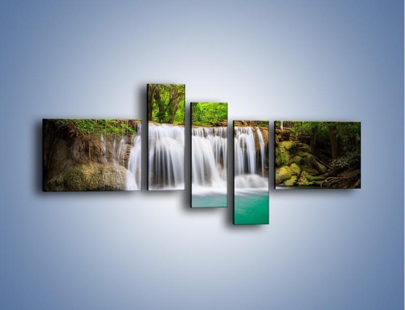 Obraz na płótnie – Kąpiel w środku lasu – pięcioczęściowy KN995W5
