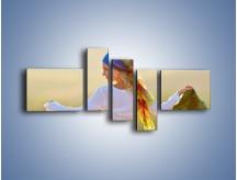 Obraz na płótnie – Kolorowa chusta na wietrze – pięcioczęściowy L041W5