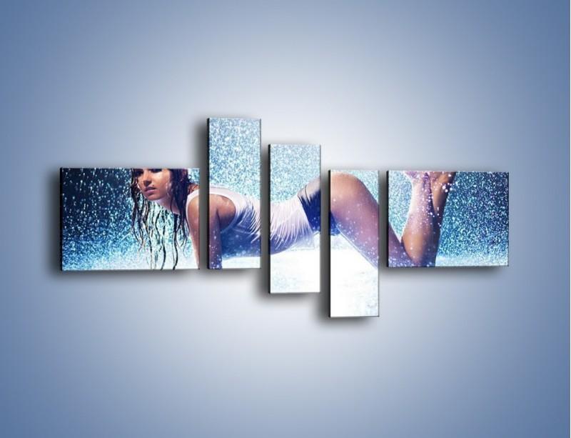 Obraz na płótnie – Ciało zmoczone deszczem – pięcioczęściowy L045W5