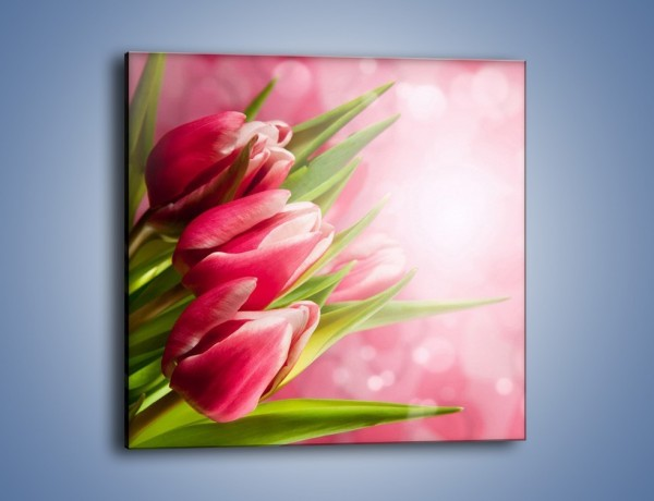 Obraz na płótnie – Promień świetlny odbity w kwiatach – jednoczęściowy kwadratowy K215