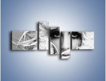 Obraz na płótnie – Czapka z białych piór – pięcioczęściowy L283W5