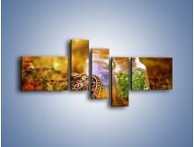 Obraz na płótnie – Kolorowy świat jak z bajki – pięcioczęściowy O189W5