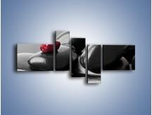 Obraz na płótnie – Czerwień wśród czarności – pięcioczęściowy O212W5