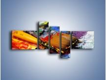 Obraz na płótnie – Kolory ze sobą zmieszane – pięcioczęściowy O251W5
