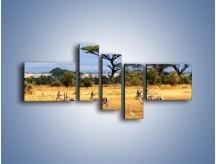 Obraz na płótnie – Antylopy w słonecznej afryce – pięcioczęściowy Z003W5