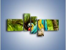 Obraz na płótnie – Kolorowe papugi w szeregu – pięcioczęściowy Z029W5