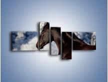 Obraz na płótnie – Brązowy ogier na zimowym spacerze – pięcioczęściowy Z056W5