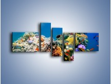 Obraz na płótnie – Fauna i kolorowi towarzysze – pięcioczęściowy Z116W5