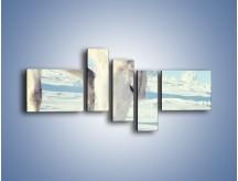 Obraz na płótnie – Arab w śnieżnym puchu – pięcioczęściowy Z144W5