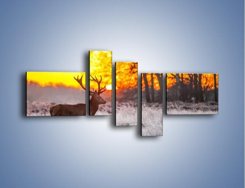 Obraz na płótnie – Jeleń o zachodzie słońca – pięcioczęściowy Z164W5