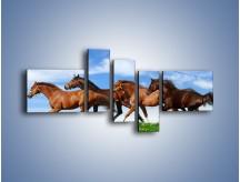 Obraz na płótnie – Galopujące stado brązowych koni – pięcioczęściowy Z172W5
