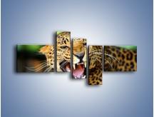 Obraz na płótnie – Jaguar z pazurem – pięcioczęściowy Z184W5