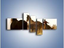 Obraz na płótnie – Cowboy wśród koni – pięcioczęściowy Z206W5