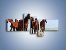 Obraz na płótnie – Konie na wybiegu – pięcioczęściowy Z222W5