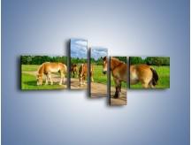 Obraz na płótnie – Konie z gospodarstwa – pięcioczęściowy Z242W5