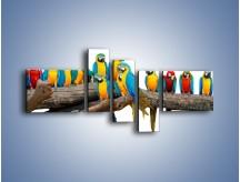 Obraz na płótnie – Kolorowe stado papug – pięcioczęściowy Z326W5