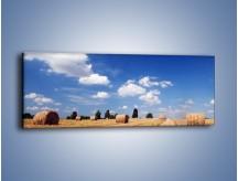 Obraz na płótnie – Belki na polskiej wsi – jednoczęściowy panoramiczny KN190