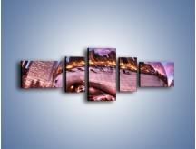 Obraz na płótnie – Cloud Gate w Chicago – pięcioczęściowy AM352W6