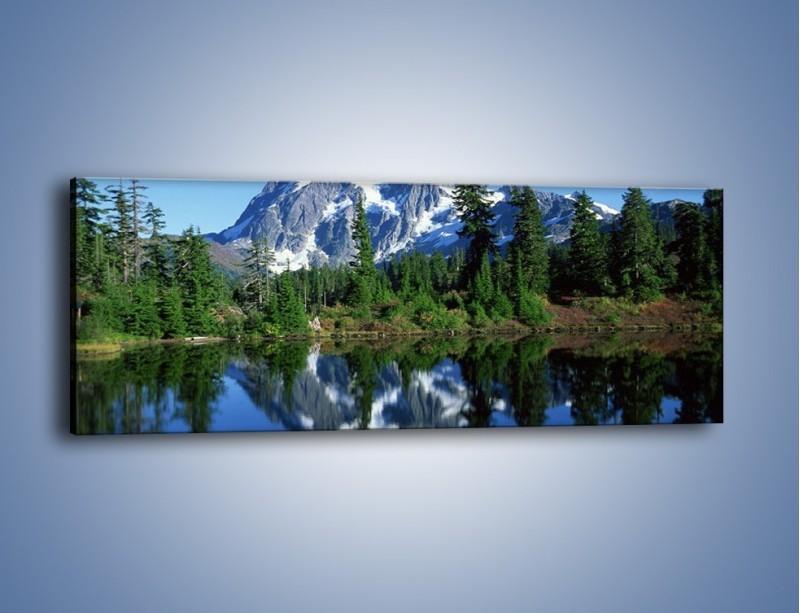 Obraz na płótnie – Zimowe pozostałości w górach – jednoczęściowy panoramiczny KN225
