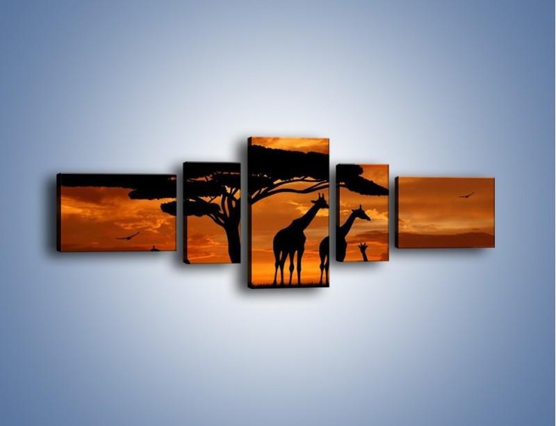 Obraz na płótnie – Żyrafy wieczorową porą – pięcioczęściowy GR266W6