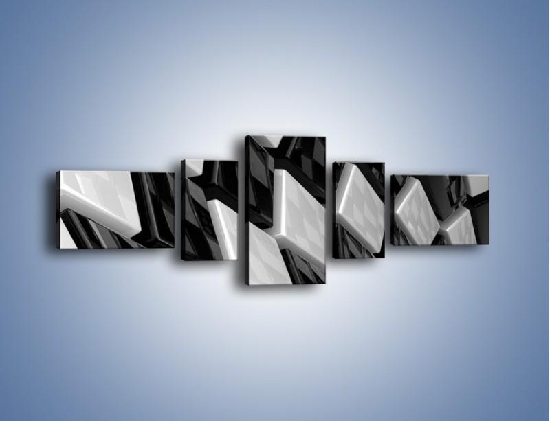 Obraz na płótnie – Czarne czy białe – pięcioczęściowy GR425W6