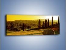 Obraz na płótnie – Belka siana w cieniu – jednoczęściowy panoramiczny KN236