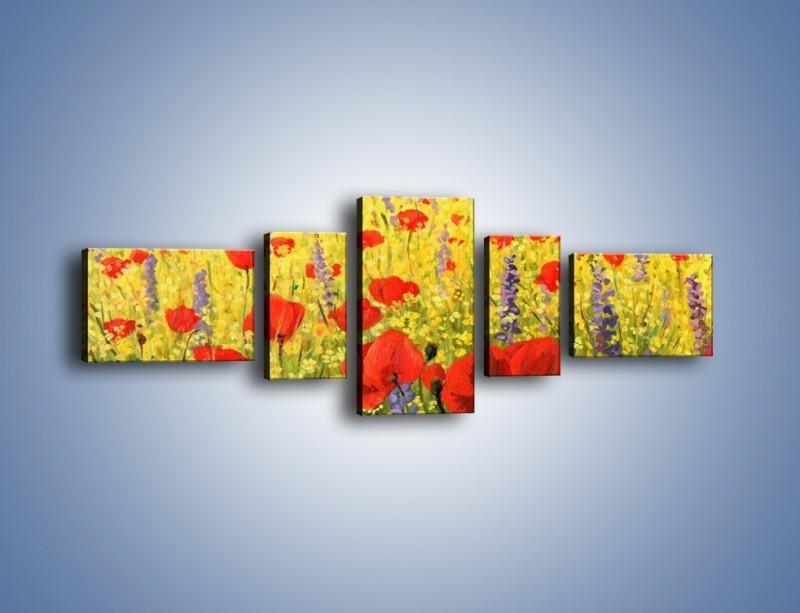 Obraz na płótnie – Cała łąka maków – pięcioczęściowy GR480W6