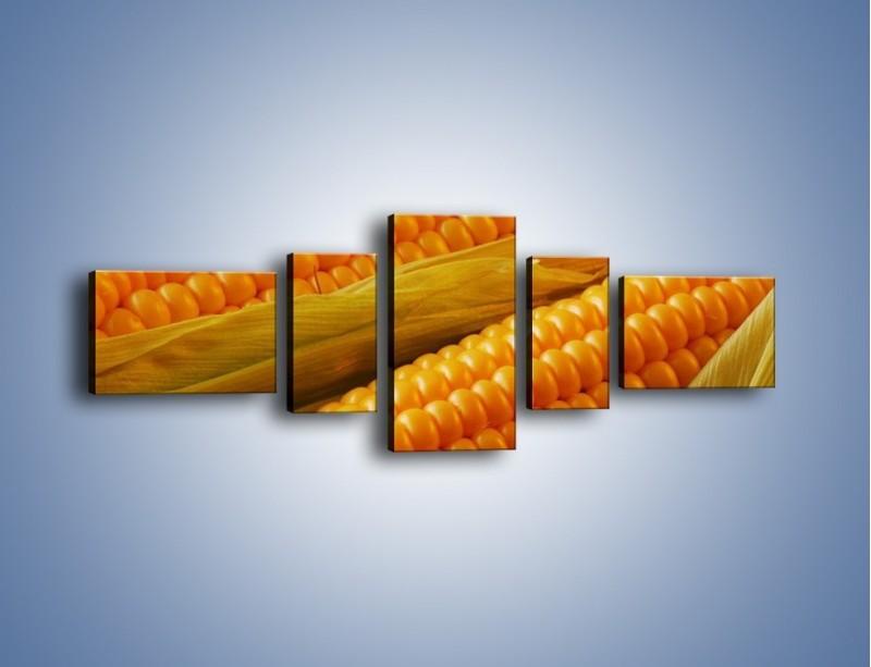 Obraz na płótnie – Kolby dojrzałych kukurydz – pięcioczęściowy JN046W6