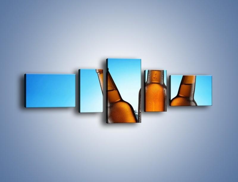 Obraz na płótnie – Szron na butelkach piwa – pięcioczęściowy JN075W6