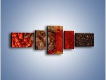 Obraz na płótnie – Afrykańskie przyprawy – pięcioczęściowy JN109W6