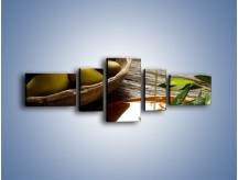 Obraz na płótnie – Bogactwa wydobyte z oliwek – pięcioczęściowy JN270W6