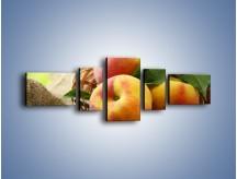 Obraz na płótnie – Dojrzałe jabłka w koszu – pięcioczęściowy JN390W6