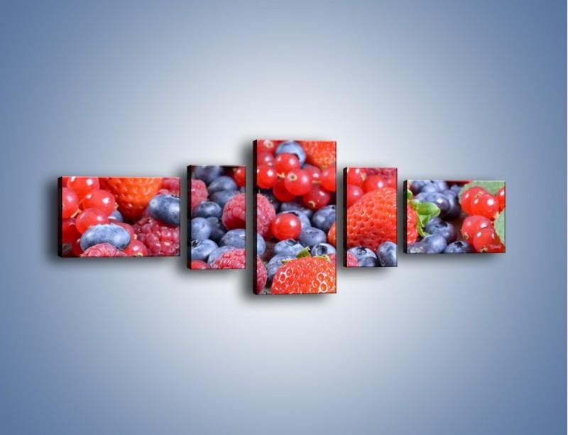 Obraz na płótnie – Owoce z działki – pięcioczęściowy JN422W6