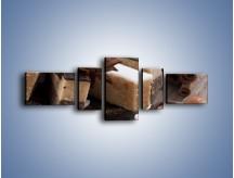 Obraz na płótnie – Czekoladowo-orzechowe wypieki – pięcioczęściowy JN427W6