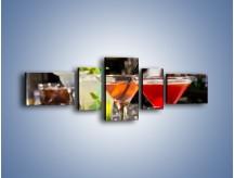 Obraz na płótnie – Drinki na barze – pięcioczęściowy JN432W6