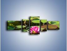 Obraz na płótnie – Ciemno-różowy nenufar na wodzie – pięcioczęściowy K014W6