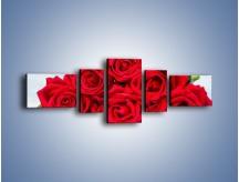 Obraz na płótnie – Czerwone róże bez kolców – pięcioczęściowy K1021W6