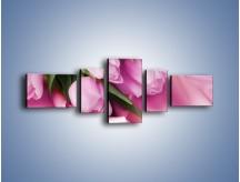 Obraz na płótnie – Atłas wśród tulipanów – pięcioczęściowy K152W6