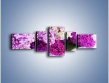Obraz na płótnie – Bez w różnych kolorach – pięcioczęściowy K389W6