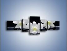 Obraz na płótnie – Biel w kwiecie nocą – pięcioczęściowy K512W6