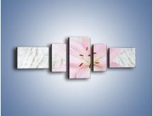 Obraz na płótnie – Cała słodycz w lilii – pięcioczęściowy K727W6