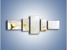 Obraz na płótnie – Białe storczyki blisko siebie – pięcioczęściowy K811W6
