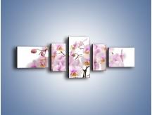 Obraz na płótnie – Cieniutkie gałązki storczyków – pięcioczęściowy K813W6