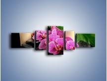 Obraz na płótnie – Ciepło ogień i kwiaty – pięcioczęściowy K881W6
