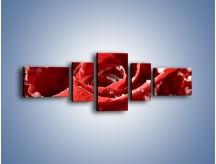 Obraz na płótnie – Chłód w różanych płatkach – pięcioczęściowy K932W6