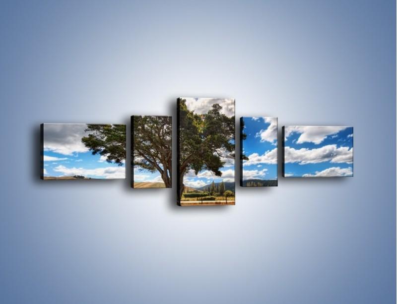 Obraz na płótnie – Cień pod rozłożystym drzewem – pięcioczęściowy KN1037W6